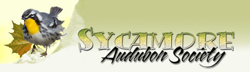 Sycamore Audubon